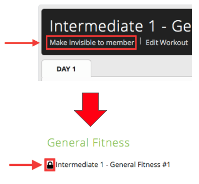 What Does Clicking 'Make Invisible/Visible to Member' Do to a